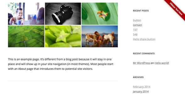 Ribbon Panel WordPress Plugin