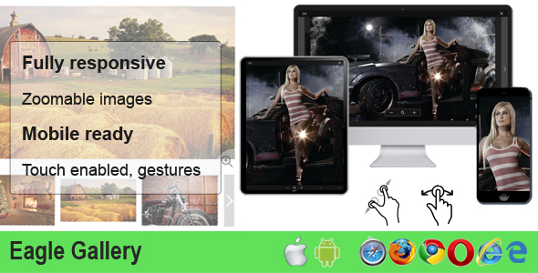 Eagle Gallery - responsive